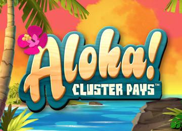 Gra Aloha Cluster Pays – klasyczna gra dla wielbicieli częstych wygranych