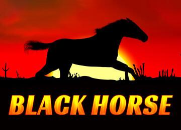 Black horse automat odkryj w sobie smykałkę do koni